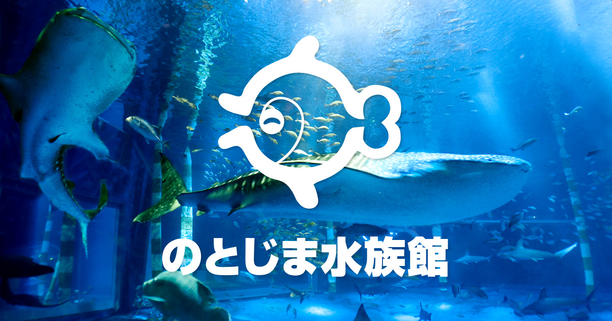 のとじま水族館 | 来て!見て!触れる!石川県の体験型水族館